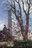 Milan Italy: modern tower at Citylife Stock Photos
