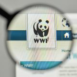 Milan, Italy - November 1, 2017: wwf logo on the website homepag. E Stock Photo