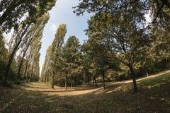 Milan Italy: Parco Nord at fall Royalty Free Stock Photo