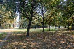 Milan Italy: Parco Nord na queda Imagem de Stock