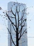 Milan Italy: Torre dell'Allianz a Citylife Fotografie Stock Libere da Diritti