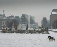 Milan, Lombardy, Italien, statyer och springbrunn i den Giulio Cesare fyrkanten, nära det nya Citylife området Fotografering för Bildbyråer