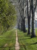 Parco Nord in Milan at fall Stock Photo