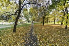 Parco Nord in Milan at fall Royalty Free Stock Photos
