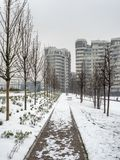 Snowing in Citylife, Milan. Milan, Lombardy, Italy: snow in late winter March at Citylife, residential buildings Royalty Free Stock Photo