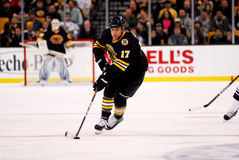 Milan Lucic Boston Bruins Royalty Free Stock Photos