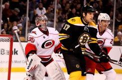 Milan Lucic Boston Bruins Stock Photo