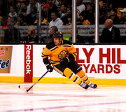 Milan Lucic Boston Bruins Stock Photography