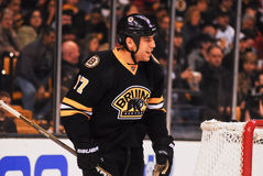 Milan Lucic Boston Bruins Royalty Free Stock Image