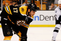 Milan Lucic Boston Bruins forward Royalty Free Stock Images