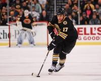 Milan Lucic Boston Bruins Stock Photography