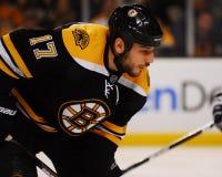 Milan Lucic, Boston Bruins forward. Stock Photos