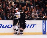 Milan Lucic, Boston Bruins forward. Royalty Free Stock Photo