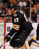 Milan Lucic, Boston Bruins forward. Stock Image