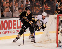 Milan Lucic, Boston Bruins vorwärts Stockfotografie