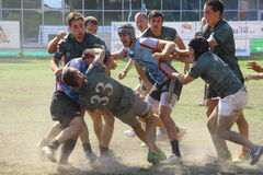 Milan Rugby Festival 2014 Royalty Free Stock Images
