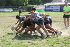 Milan Rugby Festival 2014 Stock Image