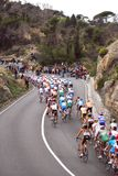 Milan-Sanremo Cycle Race 2008. Group of cyclists in the famous and international cycle race Milano-Sanremo 99° edition during the slope of Capo Berta near Royalty Free Stock Images