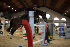 Milan Winter Show vermezzo Jumping Royalty Free Stock Images