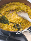 Milanaise Risotto Stock Image