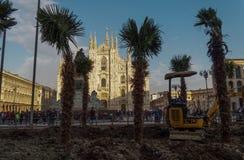 Milano, Italia - 17 de febrero de 2016: Instalación de las palmeras en el cuadrado del Duomo Fotos de archivo