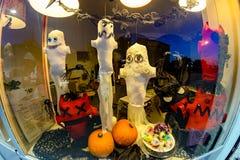 Gatto Alla Finestra Con La Decorazione Di Halloween Immagine