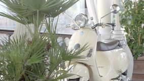 Vintage Motorbike in the Garden. Milano, Italy - June 15,207 : Vintage white vespa parked in front of the garden in Milano, Italy on June 15, 2017 stock video