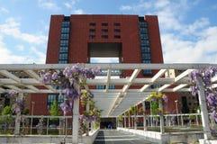 Milano - la universidad de Bicocca en el resorte Fotografía de archivo