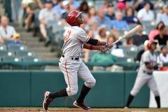 2014 MiLB - baseball batter Royalty Free Stock Image