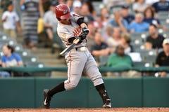2014 MiLB - baseball batter