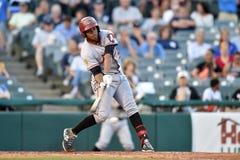 2014 MiLB - baseballsmet Arkivbild