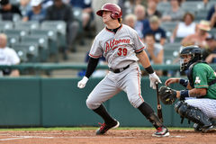 2014 MiLB - Baseballteig Lizenzfreies Stockfoto