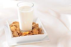 Milch. Stockfotografie