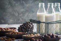 Milch des strengen Vegetariers von den Nüssen Stockbilder