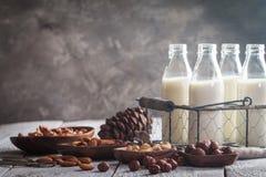 Milch des strengen Vegetariers von den Nüssen Lizenzfreies Stockfoto