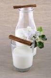 Milch in einer Flasche Stockbilder