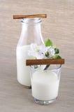 Milch in einer Flasche Lizenzfreie Stockbilder