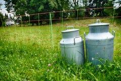 Milch kann an der Weidenlandschaft Stockfotografie