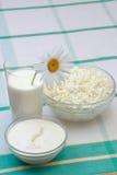 Milch, saure Sahne und Hüttenkäse Stockbilder