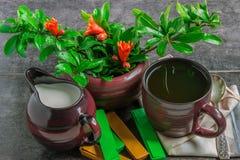 Milch, Tee, Schokolade und Granatapfel verzweigen sich mit Blumen Stockbilder