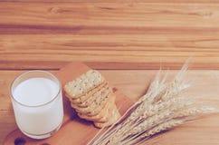 Milch und Biskuit lizenzfreies stockbild