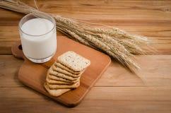 Milch und Biskuit stockfoto