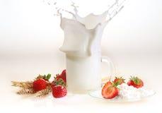 Milch und Erdbeere auf einem weißen Hintergrund, Milchspritzen in einem tran Stockbild