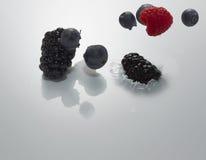 Milch und Früchte Stockfotos