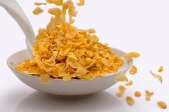 Milch und Getreide, die in ein weißes Minimalistic-Schüssel behi gegossen wird Stockfotos