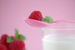 Milch und Himbeere Lizenzfreies Stockfoto