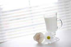 Milch und Knoblauch Stockfoto
