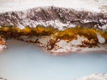 Milchig-blaues Pool in den Künstler-Farben-Töpfen, Yellowstone stockbilder
