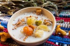 Milchige Suppe mit Pilzen Stockbild