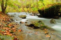 Milchiger Fall-River Lizenzfreie Stockfotografie